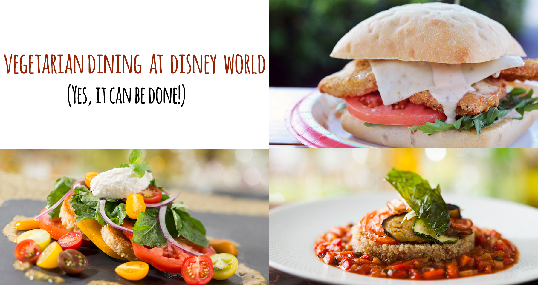 Vegetarian Food at Disney World